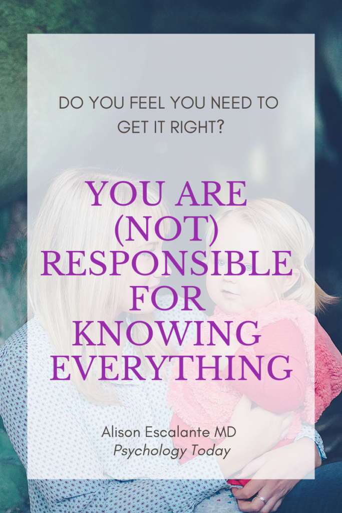 Pin for You Are (Not) Responsible for Knowing Everything