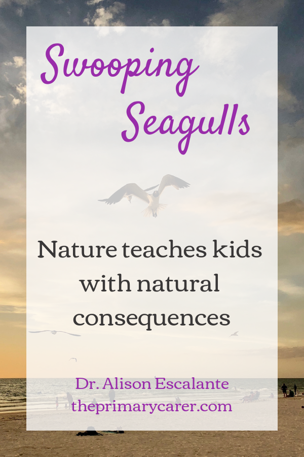 Swooping Seagulls: Nature teaches kids with natural consequences. #parentingtips #parentinghacks #familyvacation