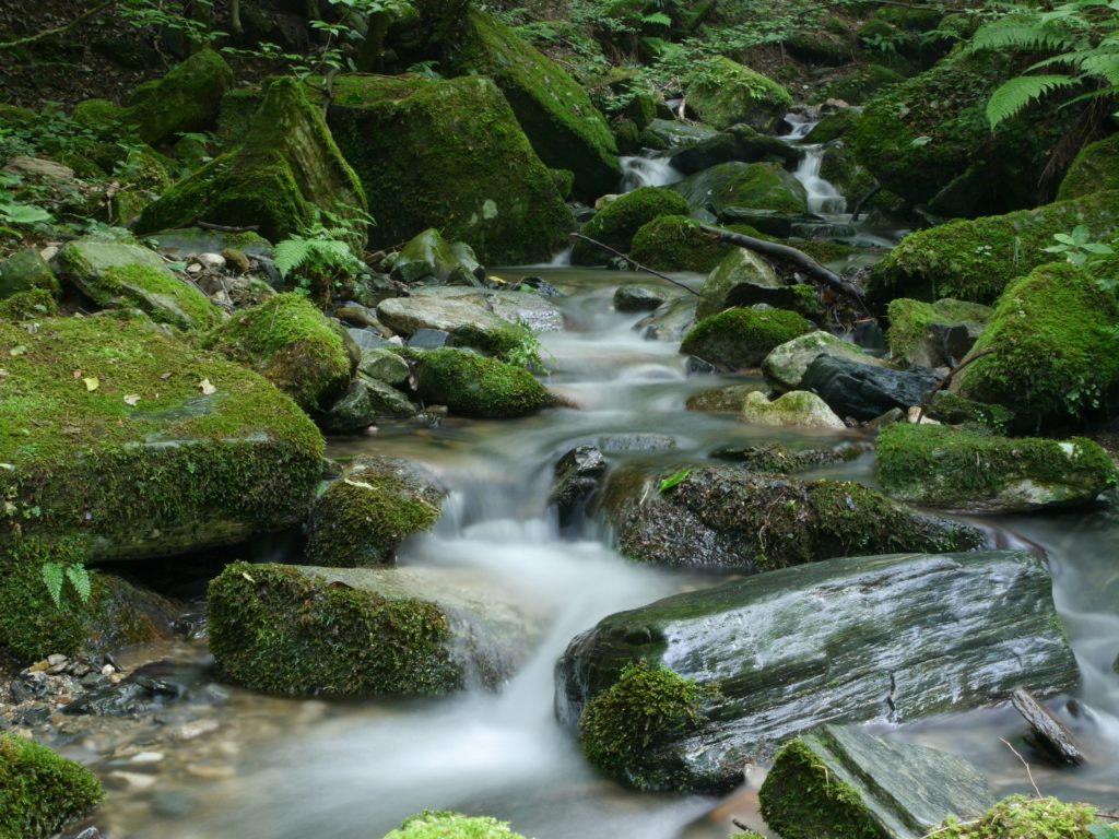 A beautiful brook with flowing water and mossy green rocks.