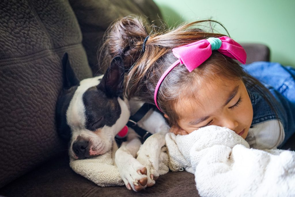 A Parenting Puzzler: We adopted a dog, and my 3-year-old son seems to be acting out because maybe he is jealous? He's normally very kind and gentle, but has been acting out in a general and has been a bit aggressive or overzealous to the dog. He's not responding to our respectful interference. #parentingtips #parenting #dogs #behaviormanagement